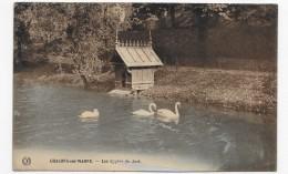 (RECTO / VERSO) CHALONS SUR MARNE EN 1929 - LES CYGNES DU JARD - CPA - Châlons-sur-Marne