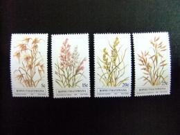 AFRIQUE DU SUD BOPHUTHATSWANA 1981 Flore Flora Yvert Nº 80 / 83 ** MNH - Bofutatsuana