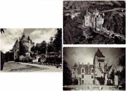 Lot 3 - 24 - CHATEAU Des MILANDES Castelnaud Fayrac - Autorisation Joséphine Baker - 1 Bis Delvert / I.B. 5842/5841 YVON - Pájaros