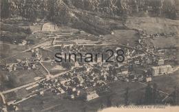 CHAMONIX - N° 207 - CHAMONIX A VOL D'OISEAU - Chamonix-Mont-Blanc