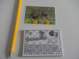 24 Images PANINI - BEBES ANIMAUX CALINS 2010 - Sans Double - (ou à L'unité : 30 Cents) - Stickers