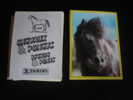 71 Images - CHEVAUX & PONEYS  1997 - Sans Double - (ou à L'unité : 25 Cents) - Stickers