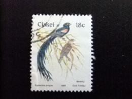 AFRIQUE DU SUD CISKEI 1989  Oiseau Pájaro  Yvert Nº 157 º FU - Ciskei