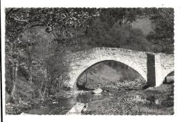Cp, 43, Saint-Didier-en-Velay, Pont De Clare - Saint Didier En Velay