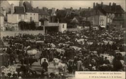44 - CHATEAUBRIANT - Marché Aux Bestiaux - Châteaubriant