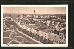 Cartolina Ostiglia, Panorama Generale - Autres Villes