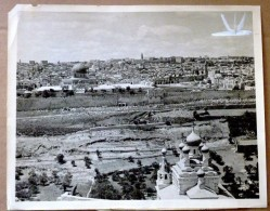 Israel Palestine 1930 Press Photo ORIGINAL JUDAICA JERUSALEM MONT DES OLIVIERS - Luoghi