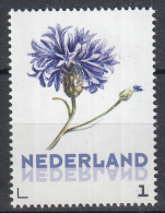 Nederland - Uitgiftedatum 20 Maart 2016 - Janneke Brinkman - Korenbloem - Flora/bloemen/planten - MNH - Netherlands