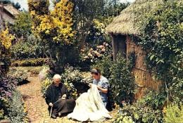MADEIRA - Bordadura E Fiação - Bordadeiras Embroiderers Brodeuses - Costumes - Ed. J. Arthur Dixon N.º 567 - Portug - Madeira