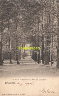 CPA BRUXELLES NELS SERIE 1 No 170 LA DREVE DE LORRAINE AU BOIS DE LA CAMPRE - Forêts, Parcs, Jardins