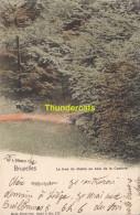 CPA BRUXELLES NELS SERIE 1 No 177 LE TROU DU DIABLE AU BOIS DE LA CAMBRE - Forêts, Parcs, Jardins