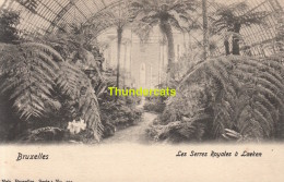 CPA BRUXELLES NELS SERIE 1 No 194 LES SERRES ROYALES A LAEKEN - Forêts, Parcs, Jardins