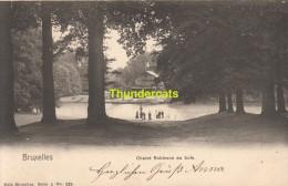 CPA BRUXELLES NELS SERIE 1 No 229 CHALET ROBINSON AU BOIS - Forêts, Parcs, Jardins