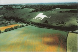 UK 57281 White Lion Whipsnade Downs Near Dunstable Unposted - Otros