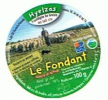 ETIQUETTE FROMAGE LE FONDANT HYELZAS - Formaggio