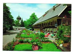 10538    Cpm  HINTERZARTEN  Hielklimatischer Kurort  - Wintersportplatz , Parkhotel Adler   ACHAT DIRECT !! - Hinterzarten