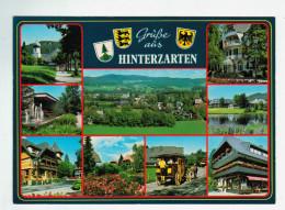 10539    Cpm  HINTERZARTEN Hohenluftkurort Und Wintersportplatz   ACHAT DIRECT !! - Hinterzarten