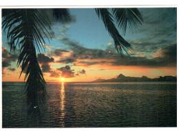 CPM TAHITI  COUCHER DE SOLEIL SUNSET  SUR MOOREA PHOTO A SYLVAIN TEVA - Halt Gegen Das Licht/Durchscheink.