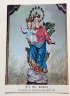 B.V. DEL BOSCO NV FG - Vergine Maria E Madonne