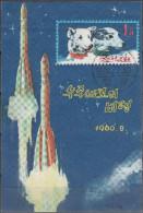 "KOREA-NORD Block 9(1289) ""Tag Der Raumfahrt In Der Sowjetunion"" FDC-used / O / FDC-gestempelt - Korea (Nord-)"