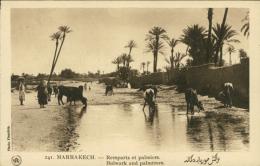 MA MARRAKECH / Remparts Et Palmiers / - Marrakech