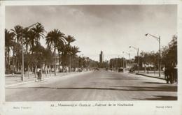 MA MARRAKECH / Avenue De La Koutoubia / - Marrakech