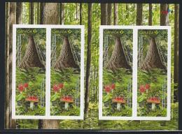 CANADA 2011 INTERNATIONAL YEAR OF FORETS  BOOKLET 8 PERMANENT STAMPS - Ongebruikt