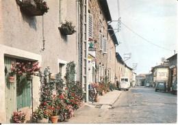 DUERNE (69) La Rue Principale  CPSM GF - France