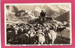 Tableaux Pyrénéens, Un Troupeau Dans La Montagne, Animée, 1940,  (Labouche, Toulouse) - Europe