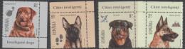 ROMANIA, 2015, MNH, DOGS, INTELLIGENT DOGS,4v - Hunde