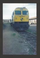 ORIGINAL REAL PHOTO 1980years TRENES ESPAÑA TRAINS SPAIN ESPAGNE CHEMIN DE FER RAILWAY - Trains