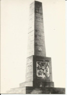 88 - DARNEY Monument TCHECOSLOVAQUE  Guerre 14/18 . - Darney