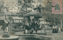 CR SAN JOSE / Limon, Parque Y Gran Hotel / - Costa Rica