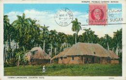 CU LA HAVANE / Bohios, Cuban Landscape / - Cuba