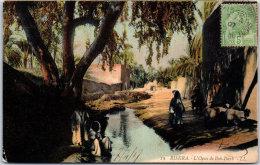 ALGERIE - BISKRA - L'oasis De Bab Darb - Biskra