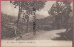 20 -2B--PIANA--L'Entrée Des Calanques-- - France