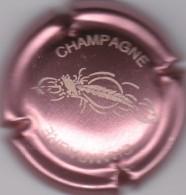GENERIQUE N°679 - Champagne