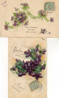 - LOT De 2 CPA Fleurs: Violettes   -11998- - Fleurs