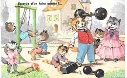 CHAT - Essayez D'en Faire Autant !...- Série N° 2275 - Chats