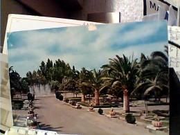 PATERNO I GIARDINI   VB1972 FK903 - Otras Ciudades