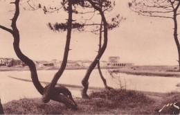 Cp , 40 , CAPBRETON , Les Villas De La Plage Et Le Canal Du Bouret - Capbreton