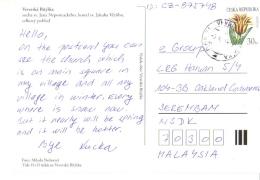 18A : Czech Republic Tulip Flower Stamp On Veverska Bityska Postcard - Czech Republic