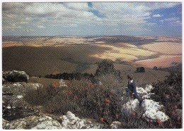 Malawi: Nyika Plateau (Sartoc) - Malawi