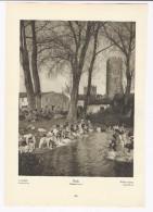 NINFA  Cisterna Di Latina     -  Fotoincisione Anni ´20 - Prints & Engravings