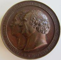 M01920  TREVIRANUS - OLBERS - PINGOUIN - DEUTSCHEN NATURFORSCHERN AERZTEN MUSEUM  BREMIEN 1844 -  Leurs Profils (66g) - Germania
