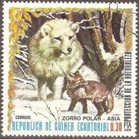 Guinée équatoriale - 1976 - Renard Polaire - Oblitéré - Guinée Equatoriale