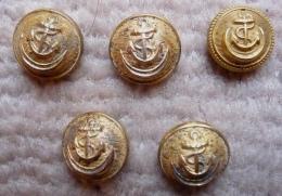 BOUTONS ( 5 ) 14 Mm  Uniforme D´Administrateur Des Colonies Années 1930 - Buttons