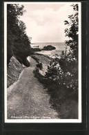 AK Lohme, Uferweg An Der Ostsee - Deutschland