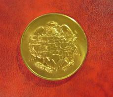 Münze Medaille USA- Department Of The Treasury Philapelphia 1969 - Monnaies