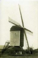 ROERMOND, Voorheen Maasniel (Limburg) - Molen/moulin - Verdwenen Standerdmolen Van Asenray, Verwoest In 1945 - Roermond